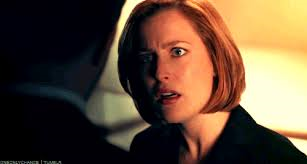 While Scully Was Gone Challenge